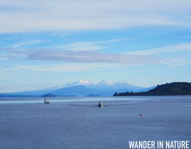 Taupo New Zealand  city pictures gallery : Lake Taupo: New Zealand's Largest Lake | WANDER IN NATURE